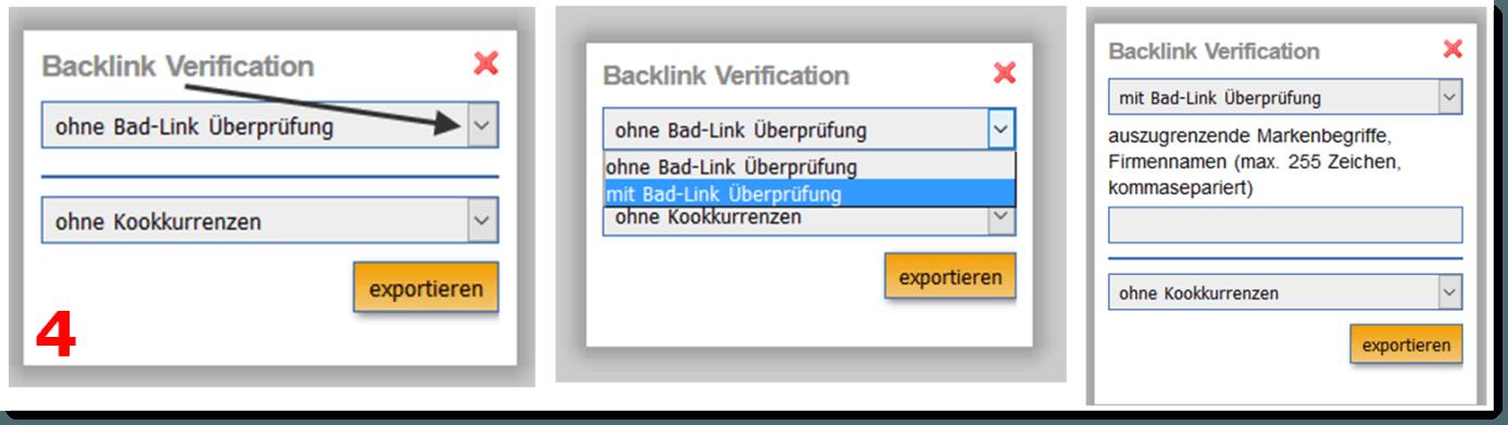 Anwendung Backlink Verification 2