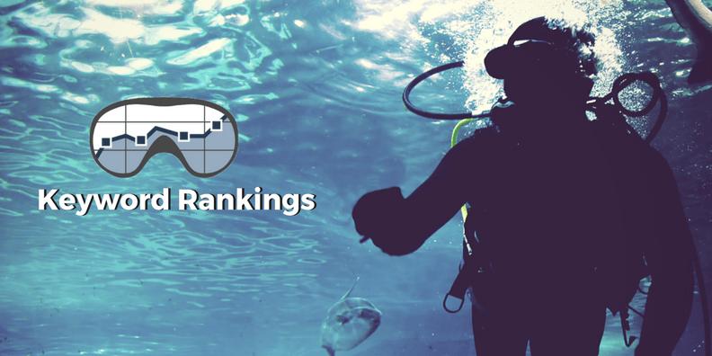 Das Keyword Rankings Tool im SEO DIVER